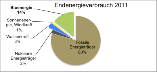 © Christian Heydecker, Daten von der World Bioenergy Association