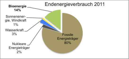 © Christian Heydecker, Daten von der World Bioenergy Association
