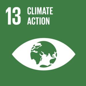 SDG 13 - Climate Action